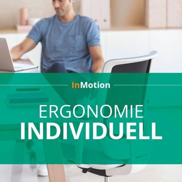BM79005/inmotion-ergonomie-individualcoaching-am-arbeitsplat