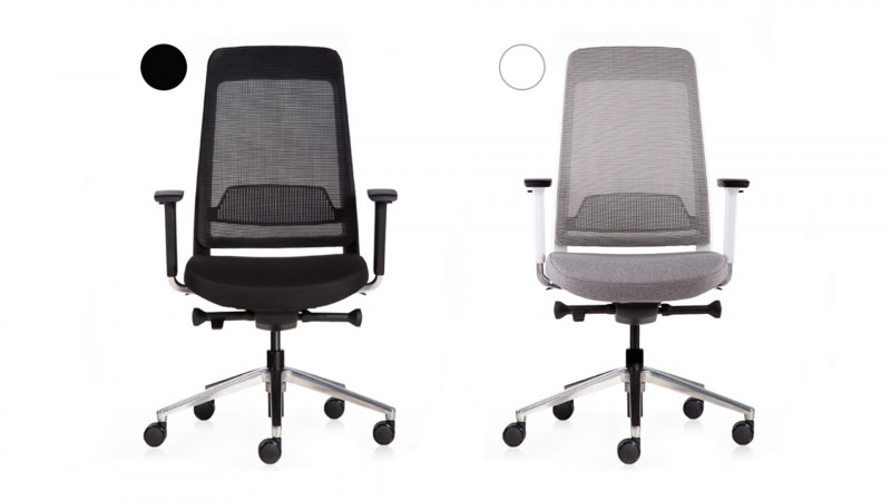 media/image/mbi-chair-content-teamo-duo-color.jpg